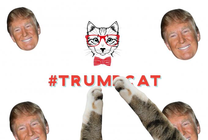 trumpcat-thumbnail.png